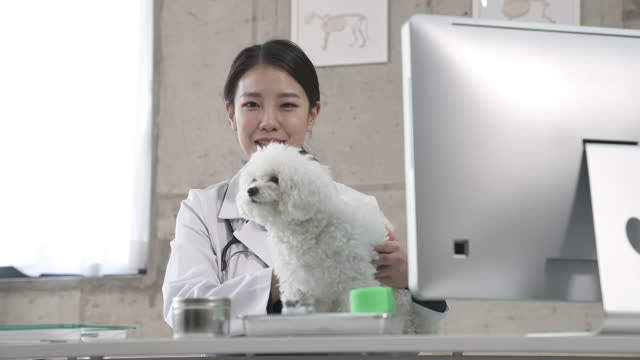 animal hospital - vet looking at camera and smiling with puppy - 体重計点の映像素材/bロール