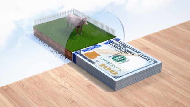 animal loan - 4k resolution - banking sign stock videos & royalty-free footage