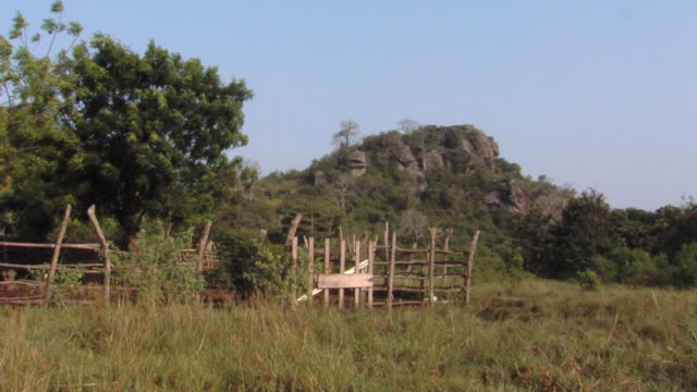 ws animal pen in field by rock formation, tamale, ghana - animal pen stock videos & royalty-free footage