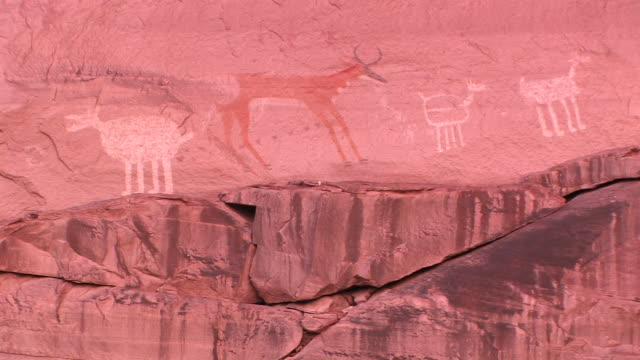 cu animal petroglyphs on wall at antelope house/ canyon de chelly national monument, arizona - canyon de chelly stock videos & royalty-free footage