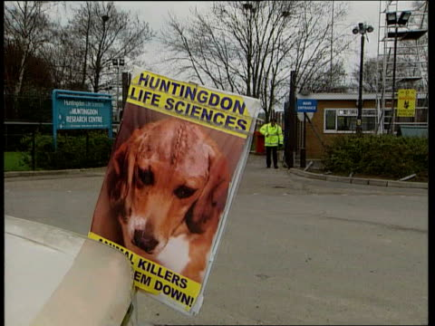 Animal rights activist from British Union Against Vivisection Reform Group sitting in car speaking into microphone SOT protesting outside Huntingdon...