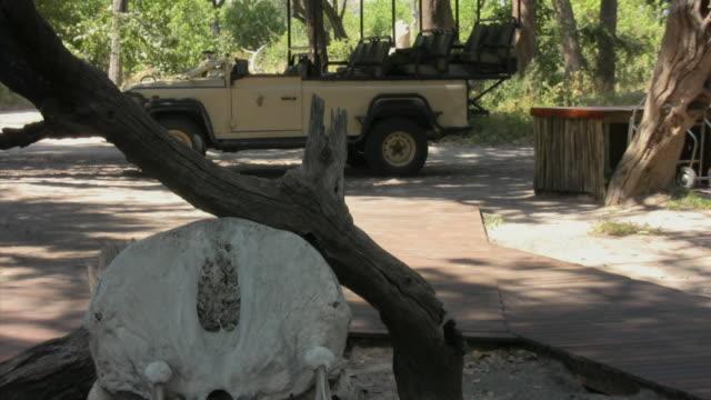 cu, zo, ms, animal skull and safari off-road vehicle at safari camp entrance, botswana - animal skull stock videos and b-roll footage