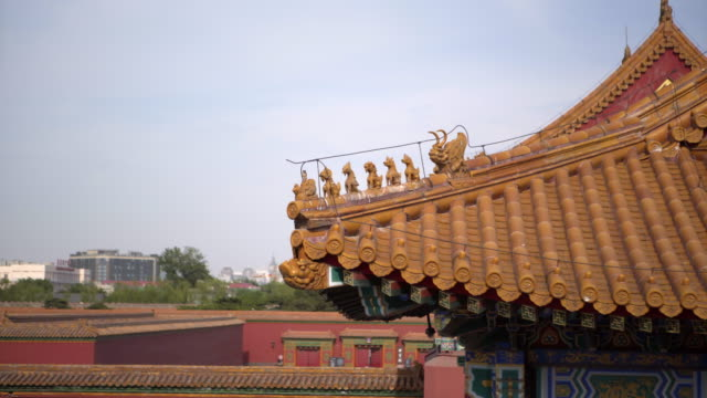 animal statues on traditional roof structure at forbidden city against sky - beijing, china - verbotene stadt stock-videos und b-roll-filmmaterial