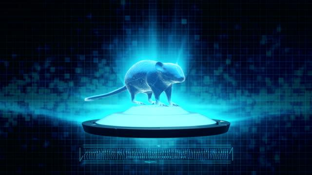 vídeos de stock e filmes b-roll de animal testing - mutação genética