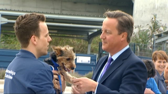 David Cameron meets 1000th volunteer at Battersea Dogs and Cats Home ENGLAND London Battersea Dogs and Cats Home EXT Various shots of James Moore...
