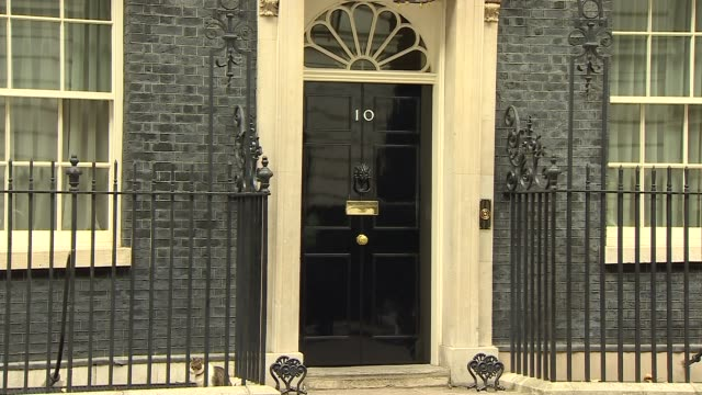 larry the cat and palmerston in downing street england london downing street int larry the cat out of no10 and sits on step / larry through railings... - downing street stock-videos und b-roll-filmmaterial