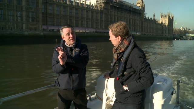 river thames stranded whale 10th anniversary; martin garside interview sot - cetacea stock videos & royalty-free footage