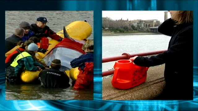 river thames whale: reasons for death; tx 20.1.2006 river thames: ext split screen rescue operation - woman with red watering can bottlenose whale... - bottle nosed dolphin stock videos & royalty-free footage