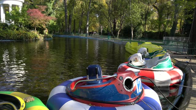 animal-shaped boats in a pond at an autumn october colourful park with foliage trees. beautiful landscape of fall foliage against a bright blue sky... - pavel gospodinov stock videos & royalty-free footage