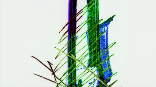 CGI, Animated abstract