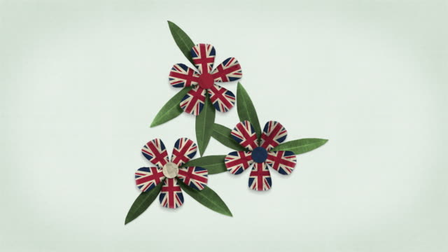 animated british flag - looping flowers formation - remembrance day stock videos & royalty-free footage