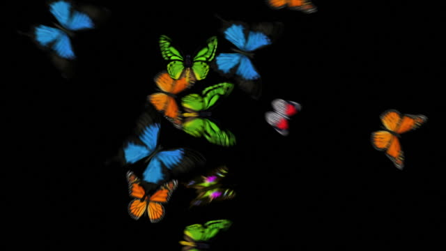 Animierte Schmetterlinge fliegen über gemischte Tiere (mit Alpha Variationen)