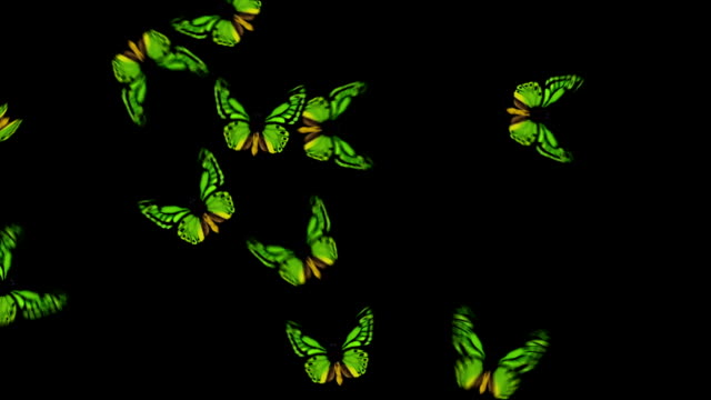 Animated Butterflies Fly In/Out - Green (With Alpha Variations)
