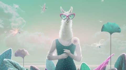 animated lama - fantasy stock videos & royalty-free footage