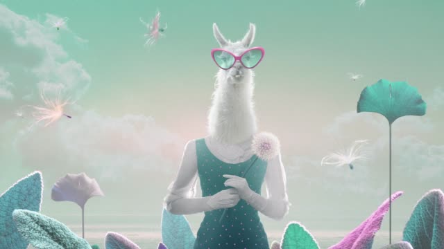 animated lama - surreal stock videos & royalty-free footage