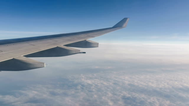animated picture with cinemagraph effect of airplane flying in sky - aircraft wing stock videos & royalty-free footage