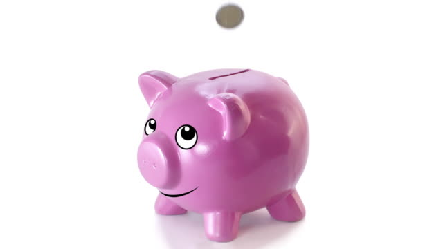 animated piggy bank - piggy bank stock videos & royalty-free footage