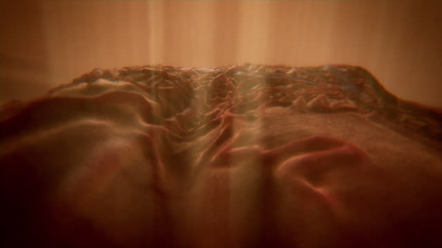 Animated sequence over the surface of the retina in the human eye.