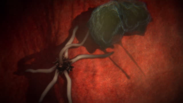 animated sequence showing a macrophage attacking and consuming a fungal spore in the lungs. - 白血球点の映像素材/bロール