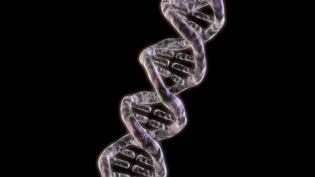 animation depicting a rotation around a dna helix. - helix model stock videos & royalty-free footage