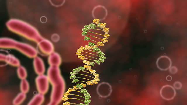 animation depicting hiv proviral dna within the human nucleus. it binds to human dna with integrase. - t細胞点の映像素材/bロール