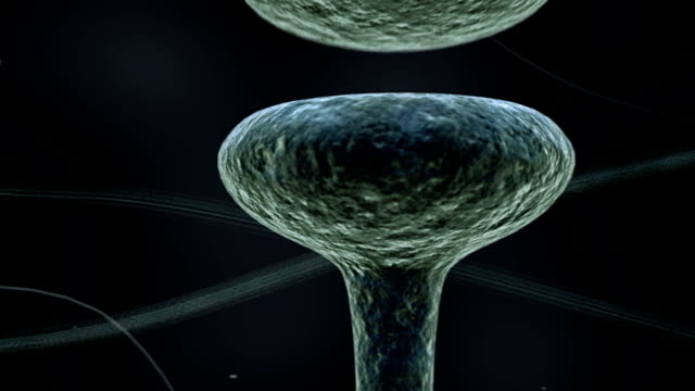 Animation depicting nervous impulses passing from one neuron to another through the synapse. The camera follows the impulses along the axons until it passes through the synapse.