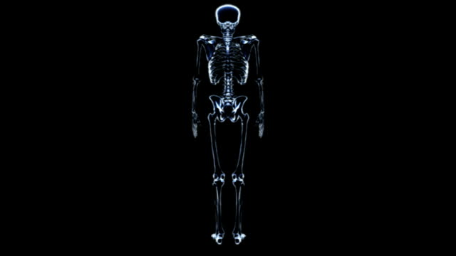 Animation depicting the ankle and skeleton in X-Ray style. After a full rotation of the skeleton the camera zooms down as the skeleton fades to reveal the ankle and foot.