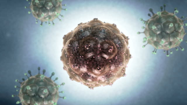 Animation depicting the HIV anatomy.  As the HIV virus continually rotates outer layers of the virus slowly fade down to leave the HIV RNA.