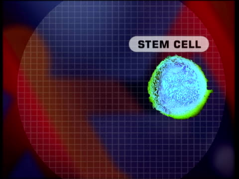 vídeos de stock, filmes e b-roll de animation explaining production of human stem-cells - biochemistry