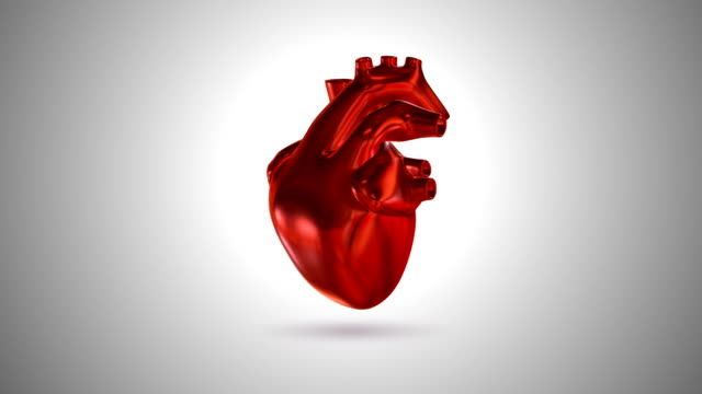 3d animation of a beating human heart (loop 4k + chroma key) - pulsating stock videos & royalty-free footage