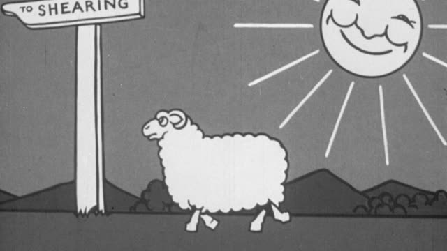 vídeos de stock e filmes b-roll de 1928 b/w animation of a lamb fanning himself in the hot sun, tossing the fan and going to shearing shed to be sheared and the resulting bales of wool being carried away by flatbed truck / united kingdom - 1928
