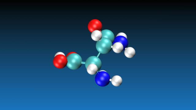 Animation of Asparagine molecule