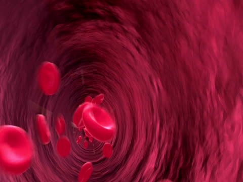 animation of blood pumping through blood vessels - artery stock videos & royalty-free footage