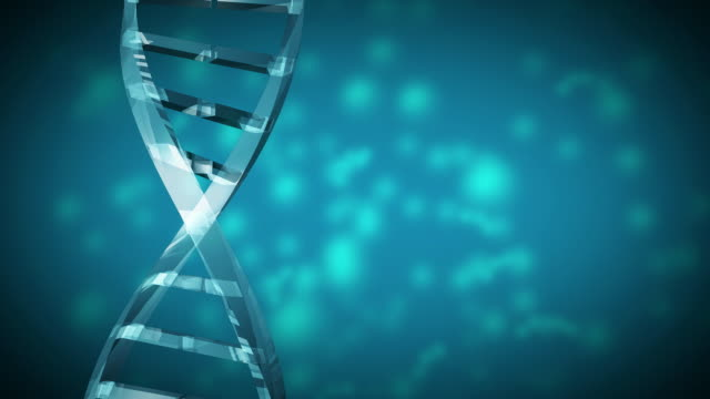 cgi cu animation of dna strand - helix stock-videos und b-roll-filmmaterial