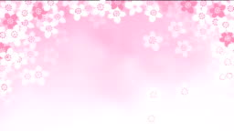 2D animation of falling cherry tree blossoms. Spring, Easter concept. Loopable HD footage