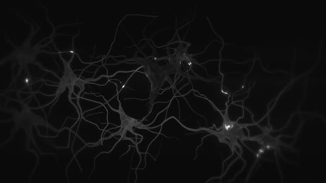 animation of firing neuron - dendrite stock videos & royalty-free footage