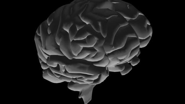 cgi cu animation of human brain - biomedical illustration stock videos & royalty-free footage