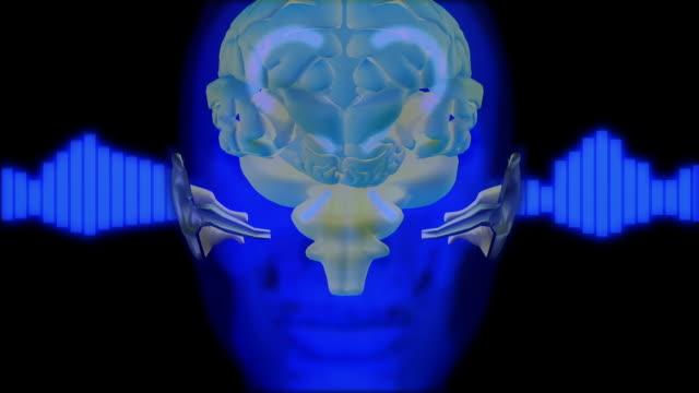 cgi cu zi animation of human head and brain - arrow symbol stock videos & royalty-free footage