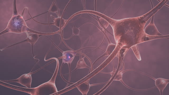 vídeos de stock, filmes e b-roll de animation of neurons firing - axônio
