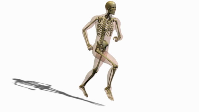 animation of person running - biomedical illustration stock videos & royalty-free footage
