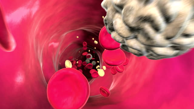 animation of the flow of blood through a blood vessel. - globulo rosso video stock e b–roll