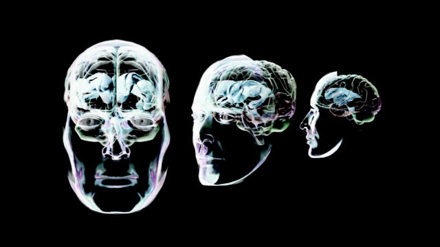 Animation of the human brain against a black background