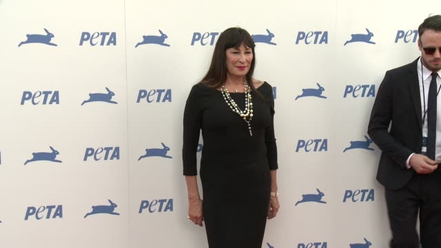 anjelica huston at peta celebrates 35th anniversary with sir paul mccartney at hollywood palladium on september 30 2015 in los angeles california - anjelica huston stock videos & royalty-free footage