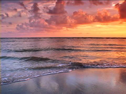 anna maria island: bradenton beach - anna maria island stock videos and b-roll footage