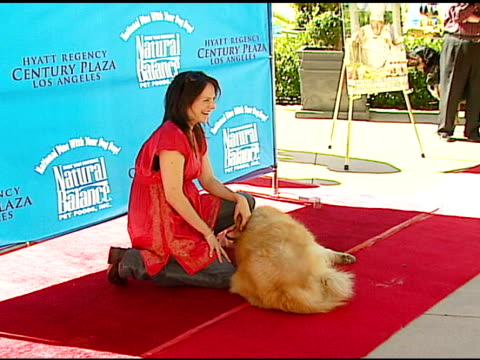 annabeth gish at the dine with your dog day at the hyatt regency century plaza in century city, california on october 19, 2006. - hyatt regency stock videos & royalty-free footage