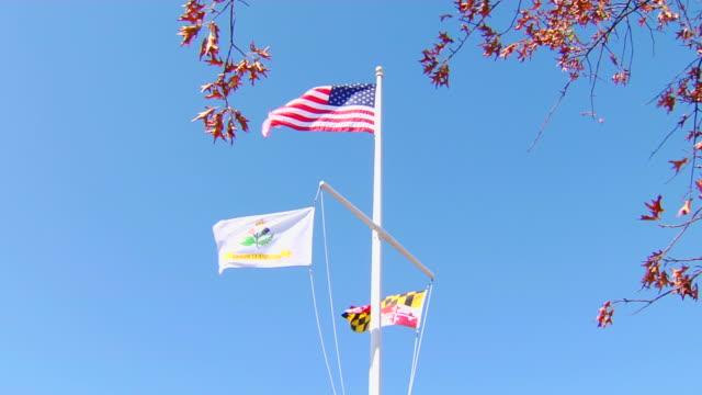 hd annapolis flags (1080/24p) - maryland delstat bildbanksvideor och videomaterial från bakom kulisserna