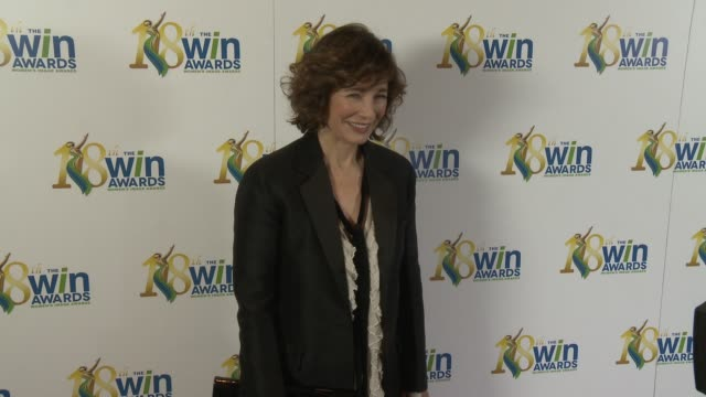 anne archer at women's image network presents the 18th annual women's image awards in los angeles, ca 2/17/17 - anne archer video stock e b–roll