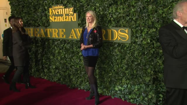 anneka rice at kensington palace on november 13, 2016 in london, england. - anneka rice stock videos & royalty-free footage
