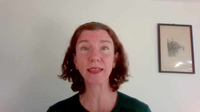 annelise dodds saying test track and trace is vital when it comes to relaxing coronavirus lockdown measures - relaxation stock videos & royalty-free footage