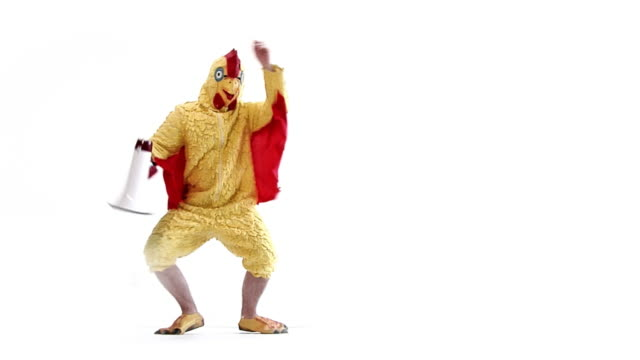 announcement chicken - mascot stock videos & royalty-free footage